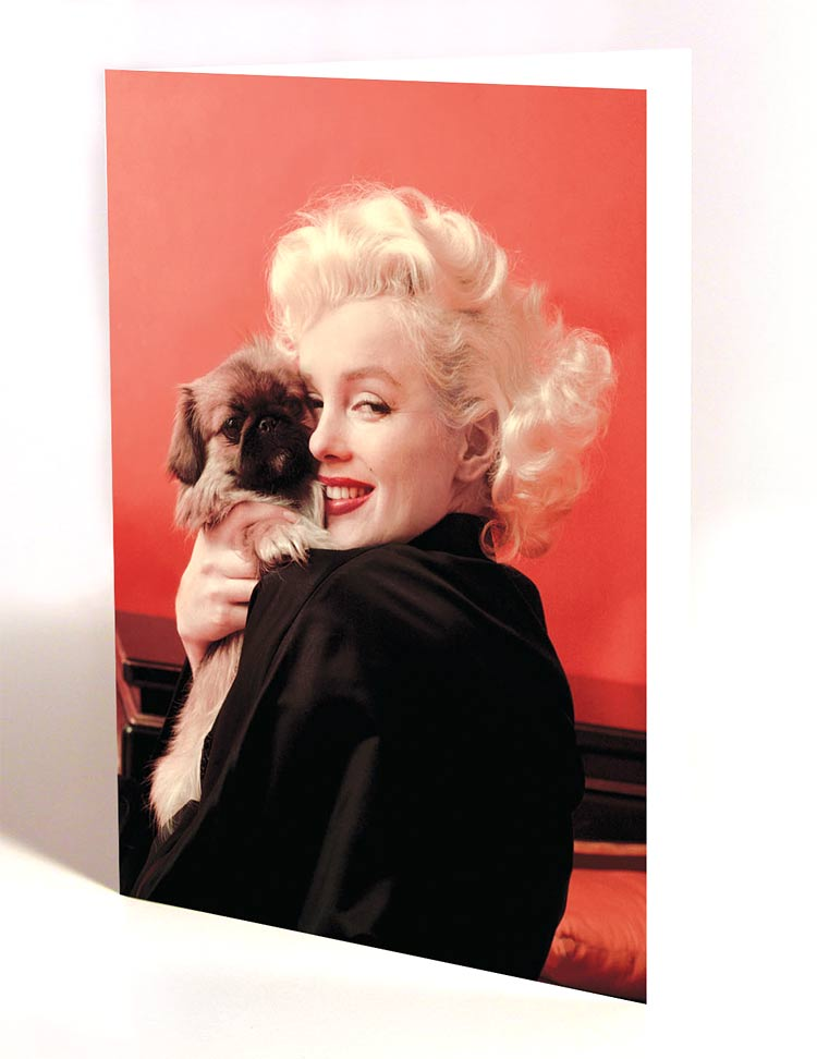 Win one of five sets of Limited Edition Marilyn Monroe all occasion greeting cards
