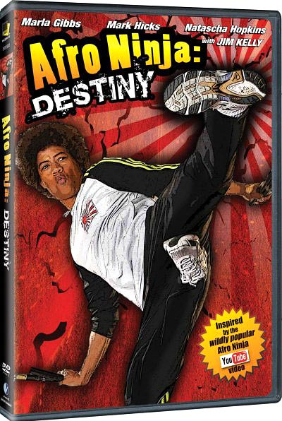 Afro Ninja: Destiny DVD cover