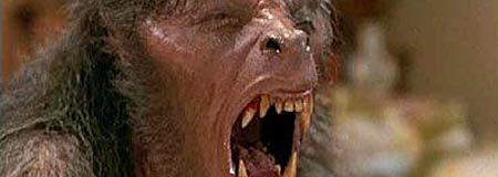Transformation scene from An American Werewolf in London