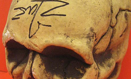 Detail of Rob Zombie-signed skull from set of Halloween II