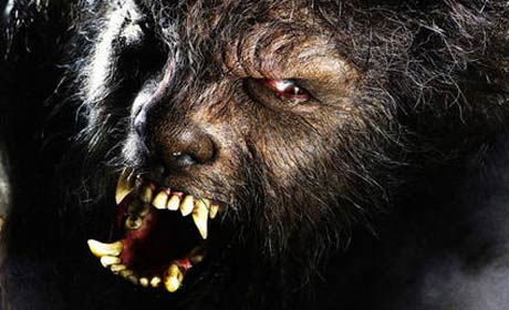 Benicio Del Toro plays The Wolfman