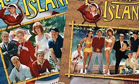 Cast of the original Gilligans Island