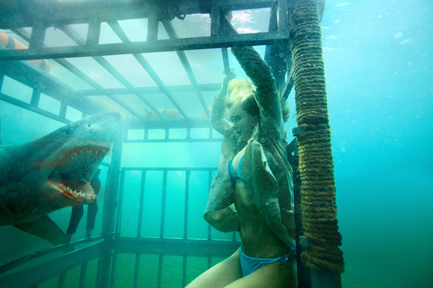 Sara Paxton in Shark Night 3D. Photo Credit: Steve Dietl © 2011 Incentive Film Productions