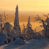 frozen_planet_01
