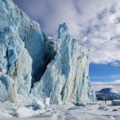 Celebrate Earth Day with a free copy of Frozen Planet on Blu-ray