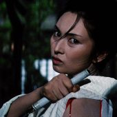 The Complete Lady Snowblood Criterion Collection Blu-ray