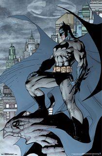 Batman The Dark Knight 22 x 34 inch Poster
