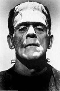 Frankenstein Monster Portrait 24 x 36 inch Movie Poster
