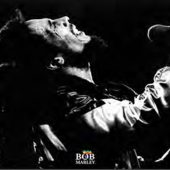 Bob Marley Live in Concert 35 x 23 inch Music Poster