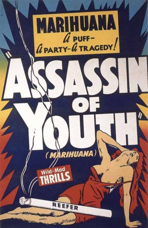 Assassin of Youth 24 X 36 inch Movie Poster