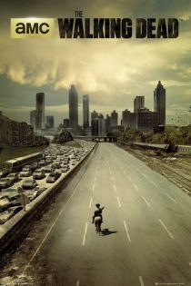 The Walking Dead Highway 24 X 36 inch Television Series Poster