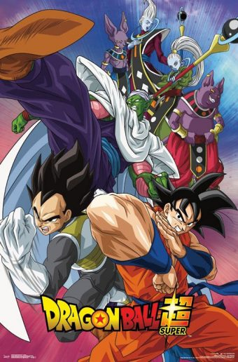 Dragon Ball Super Group Collage 22 x 34 inch Television Series Poster