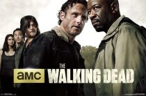 The Walking Dead Season 6 Teaser 23 x 34 inch Television Series Poster