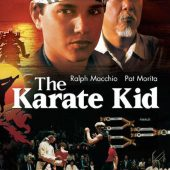 The Karate Kid 24 x 36 inch Movie Poster (1984)