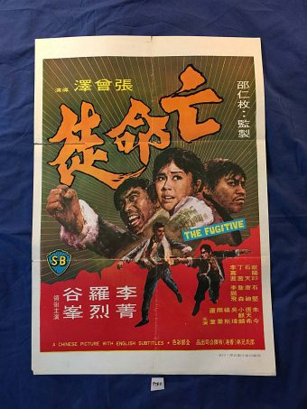 The Fugitive 21 x 30 inch Original Movie Poster – Shaw Brothers PTR11