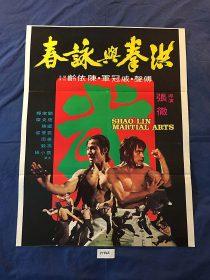 Shaolin Martial Arts 21 x 28 inch Original Movie Poster, Fu Sheng (1974)