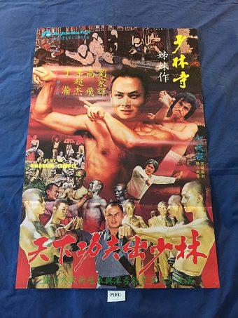 Fury in Shaolin Temple 20 x 30 in Original Movie Poster Gordon Liu (1979) PTR81