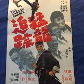 The Shadow Chaser 21×30 inch Original Movie Poster – Kung Fu Film (1973)