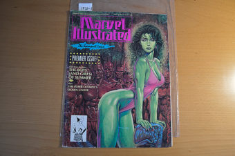 Marvel Illustrated: The Swimsuit Issue #1 Premiere Issue (1991) [19311]