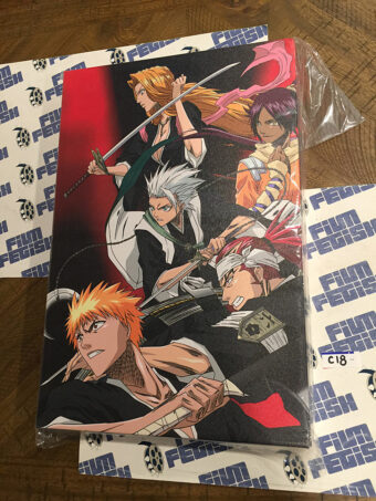 Bleach Anime TV Series 12×18 inch Officially Licensed Canvas Print