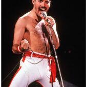 Queen Los Angeles: Freddie Mercury 23×33 inch (1982) Music Concert Poster