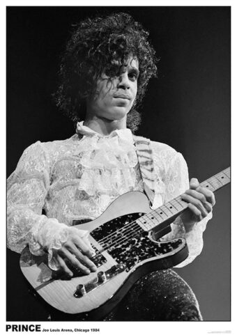Prince with Guitar at Joe Louis Arena in Chicago (1984) 23×33 inch Music Concert Poster