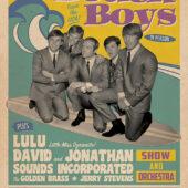 The Beach Boys Finsbury Park London 23×33 inch Music Concert Poster
