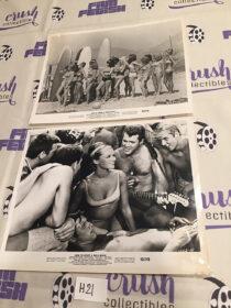 How to Stuff a Wild Bikini (1965) Set of 2 Original 10×8 inch Press Publicity Photos [H21]