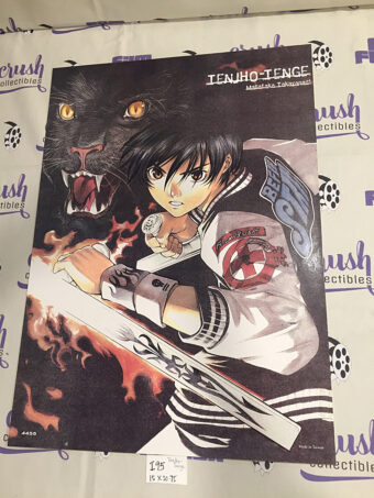 Tenjho Tenge: Masataka Takayanagi Original 15 x 20 inch Anime Movie Poster [I95]